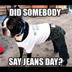 Jeans and Denim!